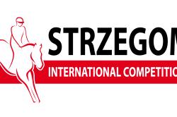 Strzegom - Wypożyczalnia mebli Dolny Śląsk